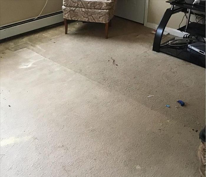 Carpet Water Damage Cleanup in Mansfield CT - Before shot carpet water damage cleanup