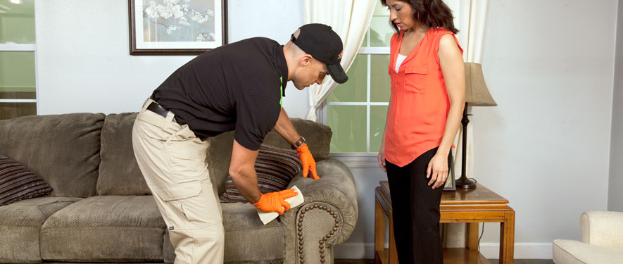 Enfield, CT carpet upholstery cleaning